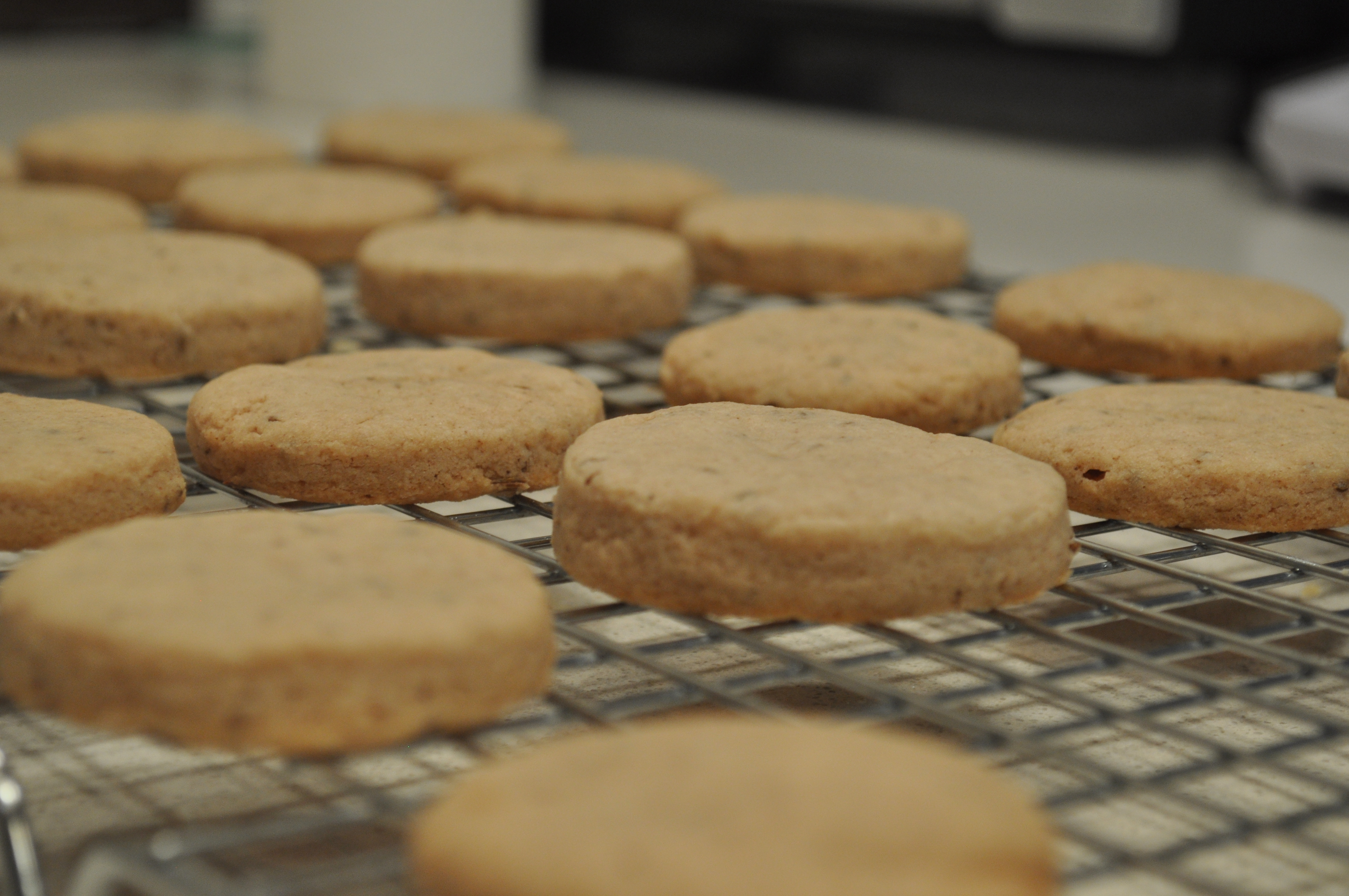 Cumin and Caraway Tea Biscuits | Social Kitchen